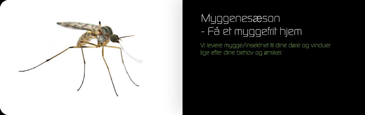 Myggesæson